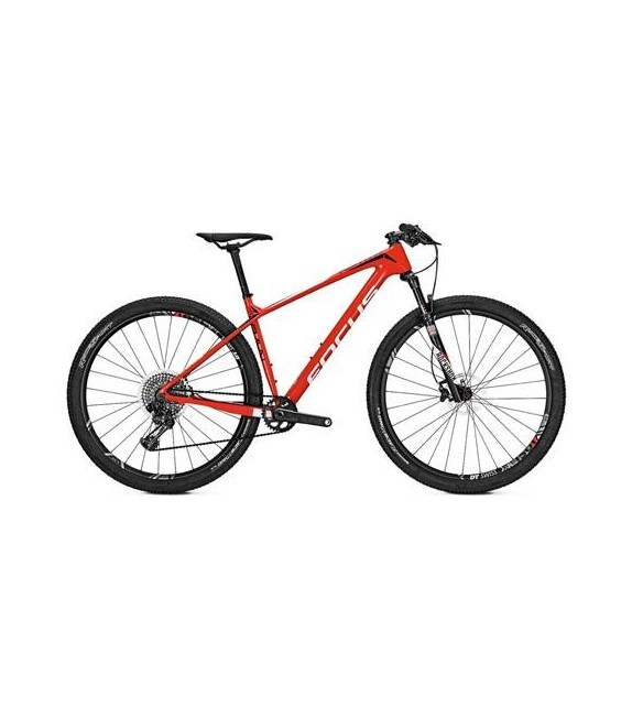 Bicicleta de montaña Raven Max Team